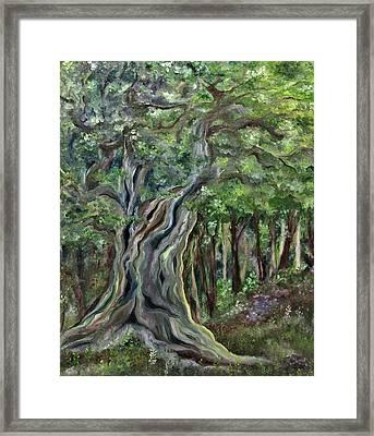 The Om Tree Framed Print