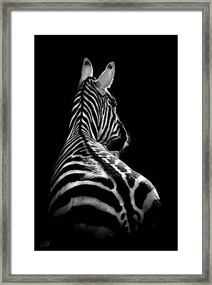The On Looker Framed Print by Paul Neville