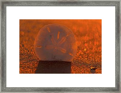 The One Dollar Sunset Framed Print