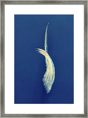 Framed Print featuring the photograph The One That Got Away by Bill Swartwout Fine Art Photography