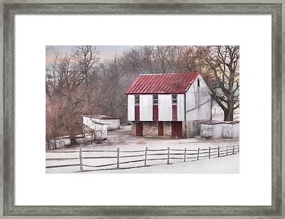 The Onion Snow 2 Framed Print