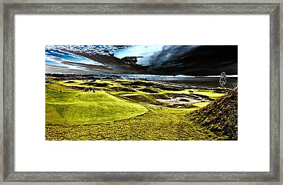 The Only Tree On The Chambers Bay Course - #15 Framed Print
