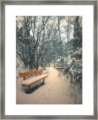 The Orange Bench Framed Print by Tara Turner