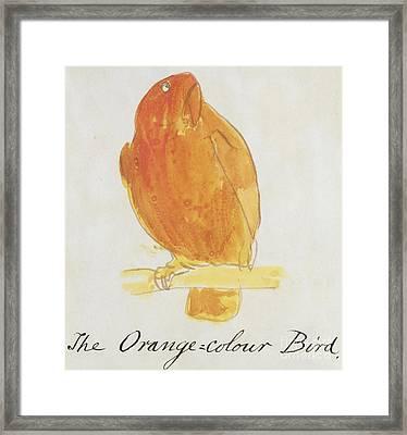 The Orange Color Bird Framed Print by Edward Lear