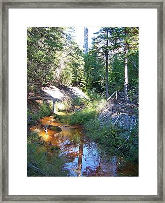 The Orange River Framed Print