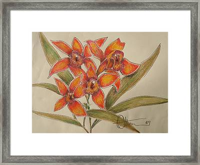 The Orange Singers Framed Print by Dan Whittemore