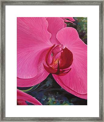 The Orchid In San Juan Framed Print