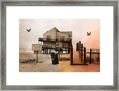 The Osprey And The Pelican Framed Print