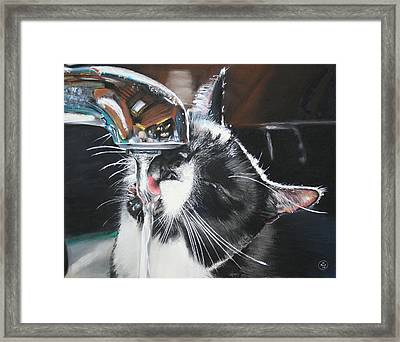 The Other Ellie Framed Print by Paul Autodore