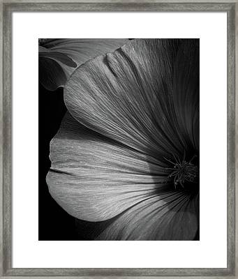 The Other One Framed Print