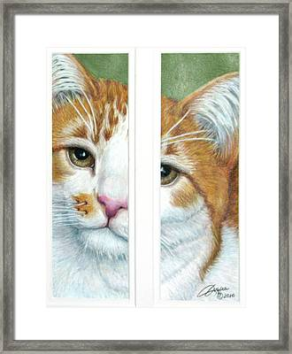 The Otherside Framed Print by Beverly Fuqua