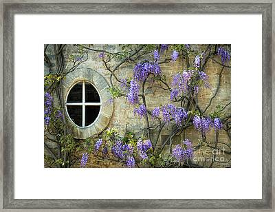 The Oval Window Framed Print by Tim Gainey