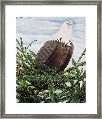 The Oversee'er Framed Print by Marilyn  McNish