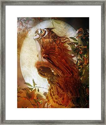 The Owl Framed Print