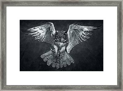 The Owl 2 Framed Print