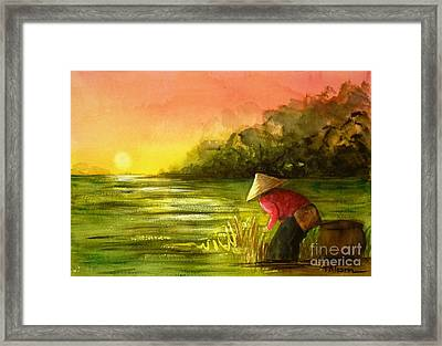 The Paddy Field Framed Print by Therese Alcorn