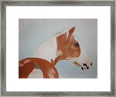 The Paint Framed Print