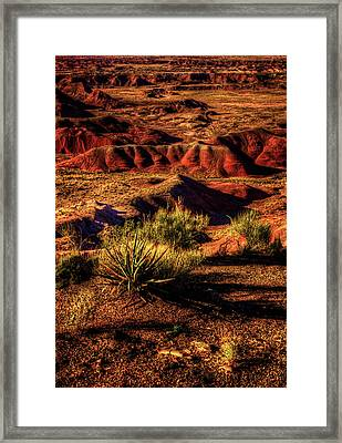 The Painted Desert From Kachina Point Framed Print