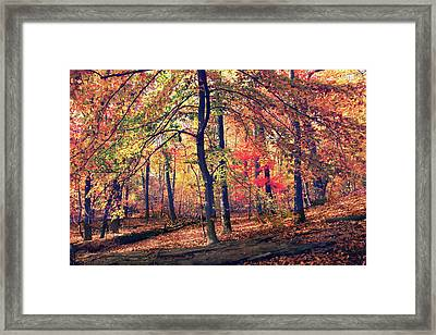 The Painted Forest Framed Print