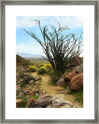 The Painted Trail Framed Print