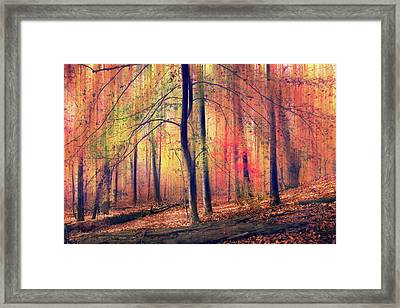 Framed Print featuring the photograph The Painted Woodland by Jessica Jenney