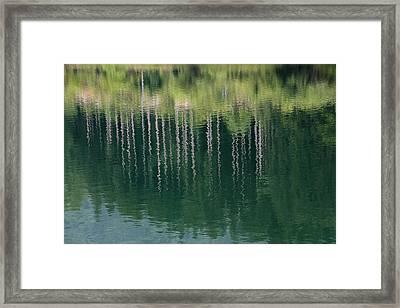 The Paintings In The Water Framed Print by Peteris Vaivars