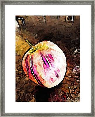 The Pale Pink Apple With The Hot Pink Stripes Framed Print