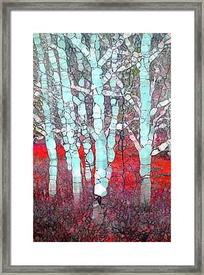 The Pale Trees Of Winter Framed Print by Tara Turner