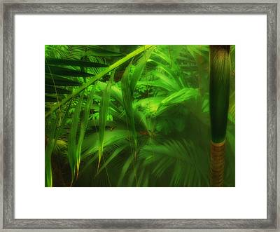 Framed Print featuring the photograph The Palm Forest  by Connie Handscomb