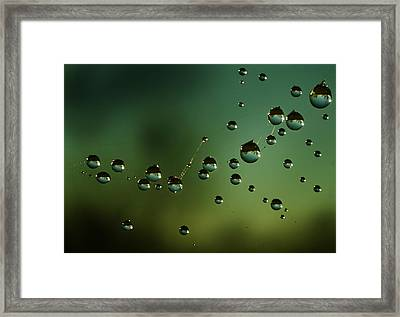 The Parallel Worlds Framed Print by Angel  Tarantella