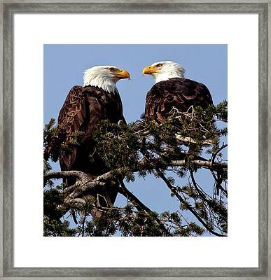 The Parents Framed Print by Sheldon Bilsker