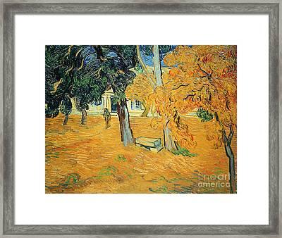 The Park At Saint Pauls Hospital Saint Remy Framed Print by Vincent van Gogh
