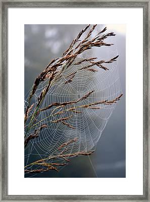 The Parlour Framed Print by Jon Rushton