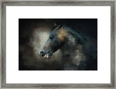 The Paso Fino 1 Horse Art Framed Print by Jai Johnson