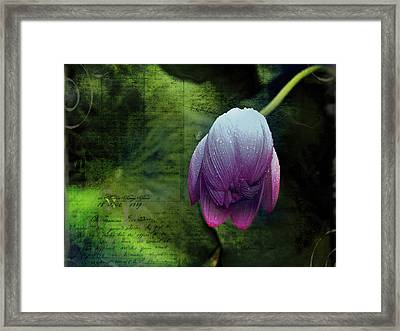 Framed Print featuring the photograph The Passing Storm by Bellesouth Studio