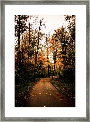 The Path Framed Print by Annette Berglund