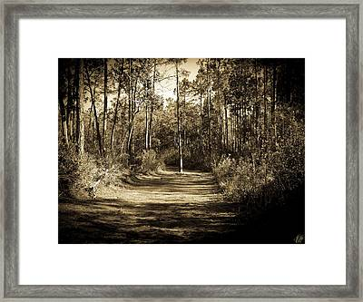 The Path Before Me, No. 6 Framed Print