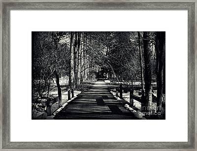 The Path Framed Print by Elizabeth Babler