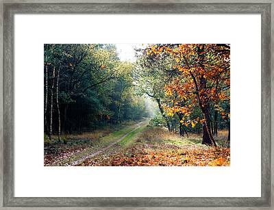 The Path Goes Ever On... Framed Print by Koert Tomasini