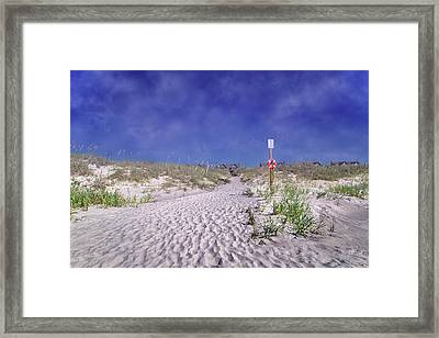 The Path Home Framed Print