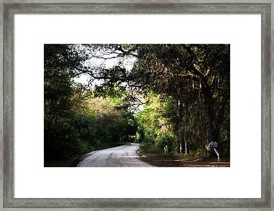 The Path Home Framed Print by Parker Cunningham