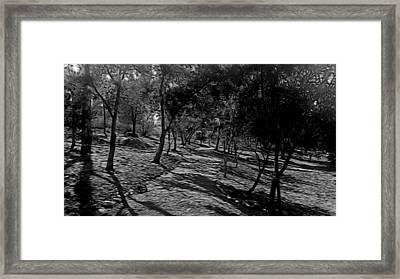The Path In Abstract Framed Print