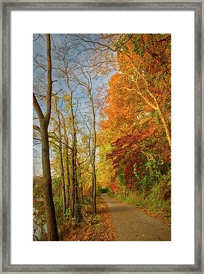Framed Print featuring the photograph The Path In Fall by Mark Dodd