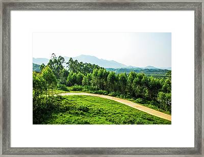 The Path In The Mountain Framed Print