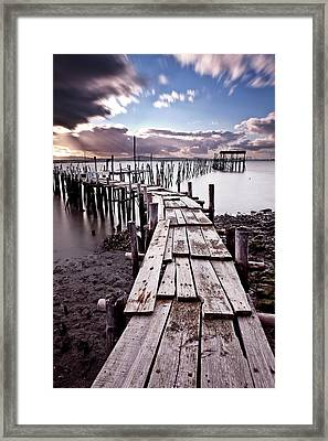 Framed Print featuring the photograph The Path by Jorge Maia