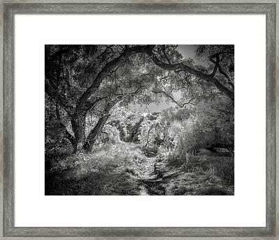 The Path Framed Print by Joseph Smith