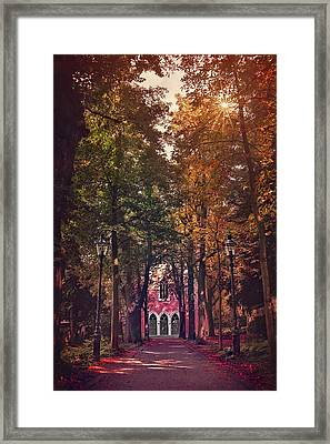 The Path Less Traveled Framed Print