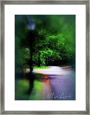 Framed Print featuring the photograph The Path by Miriam Shaw