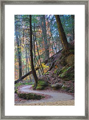 The Path Framed Print by Peter  McIntosh