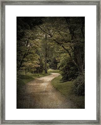 Framed Print featuring the photograph The Path by Ryan Photography